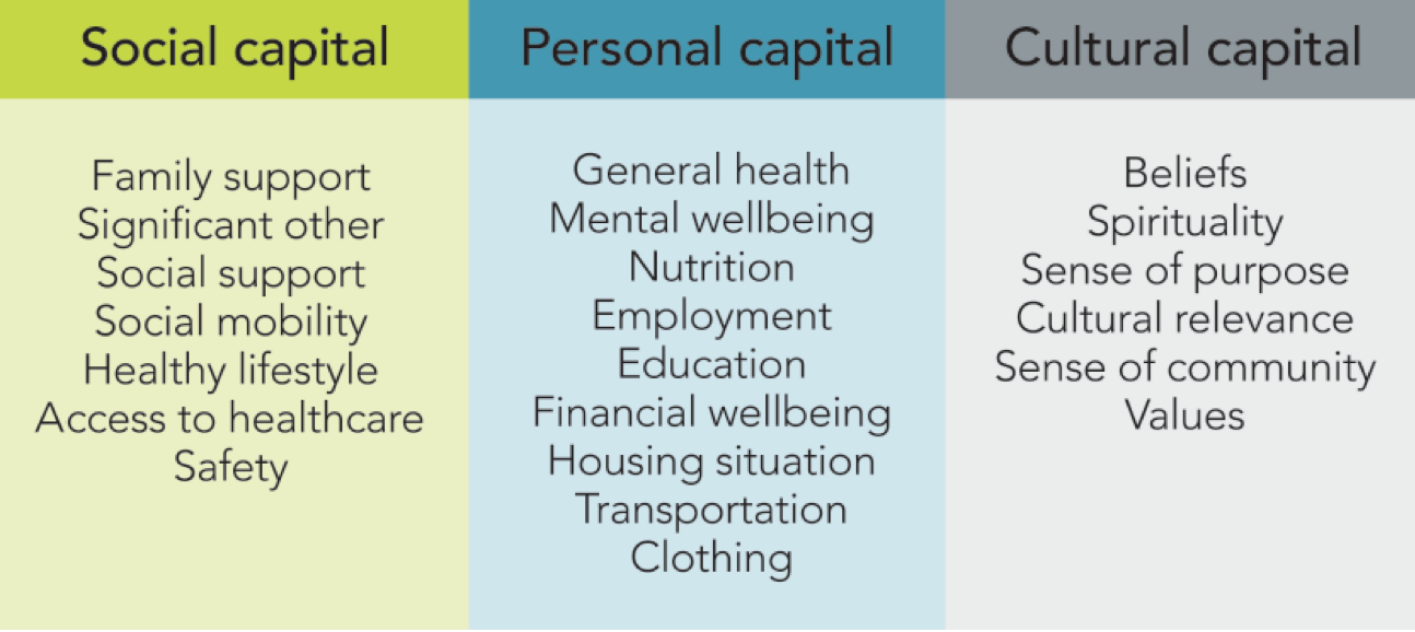 Recovery capital domains